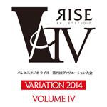 rise_va4_logo_thumb